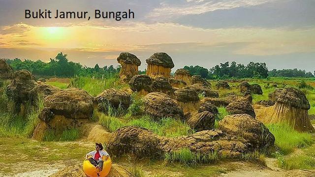 Bukit Jamur, Bungah